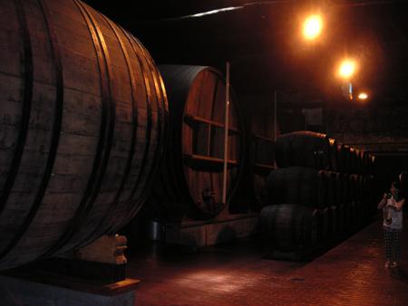 ワイン工場巡り5